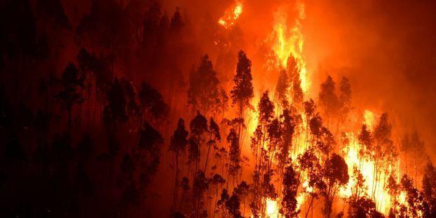 C'est désormais l'été de feu la planète